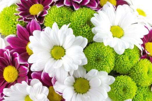 Fresh Flowers Jigsaw Puzzle