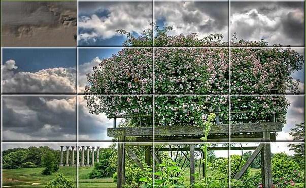 Fantasy Art Digital Landscape