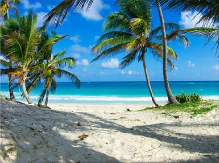 Caribbean Beach Jigsaw Puzzle