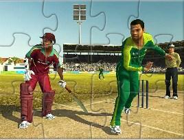 World Cricket Puzzle