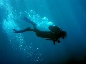 Diver Jigsaw