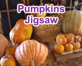 Desenhos de Pumpkins Jigsaw para colorir