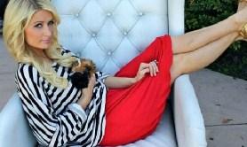Pretty Paris Hilton Puzzle