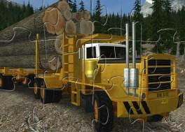 Extreme Trucker