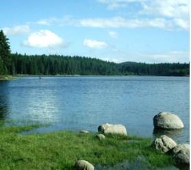 Lake Puzzle
