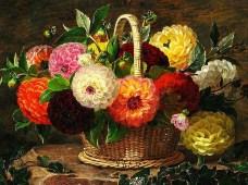 Basket of Dahlias