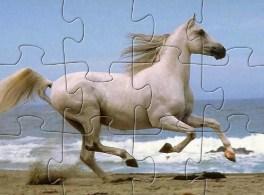 Horse Running Jigsaw