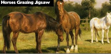 Horses Grazing Jigsaw games