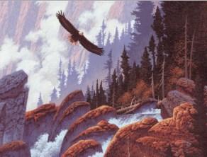 Bald Eagle Jigsaw