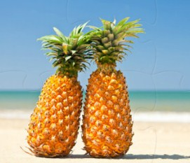 Pineapples Jigsaw Puzzle