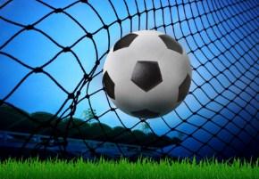 Soccer Ball In Goal Net Jigsaw Puzzle