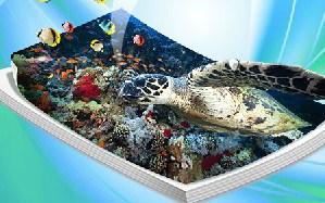 Ocean Puzzle