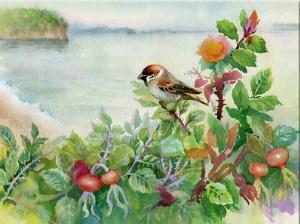 Sparrow Jigsaw Puzzle