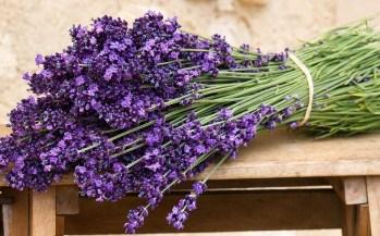 Lavender bouquet Jigsaw
