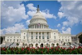 US Capitol Building Jigsaw Puzzle