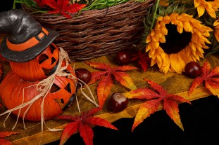 Halloween Autumn Puzzle