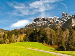 Lush Mountain Pasture Jigsaw Puzzle