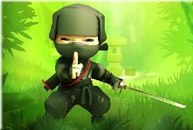 Ninja Cartoon Forest Fight