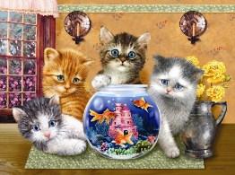 Kitties and Goldfish