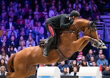 Chestnut Jumping Horse FEI World Cup
