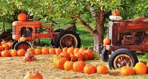 Desenhos de Tractors and Pumpkins Jigsaw Puzzle para colorir